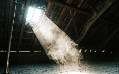 What's in Your Air Ducts?  Excess Dust!