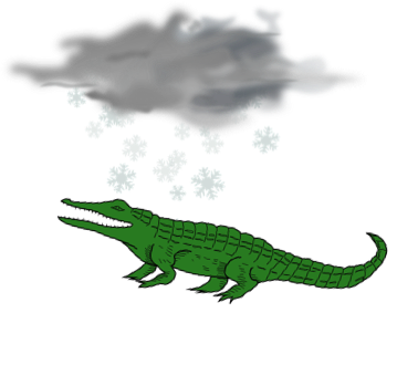 Alligator in a snow storm